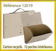 Vign mallette carton recycle ref 12019
