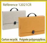 Vign mallette carton recycle ref 12021CR