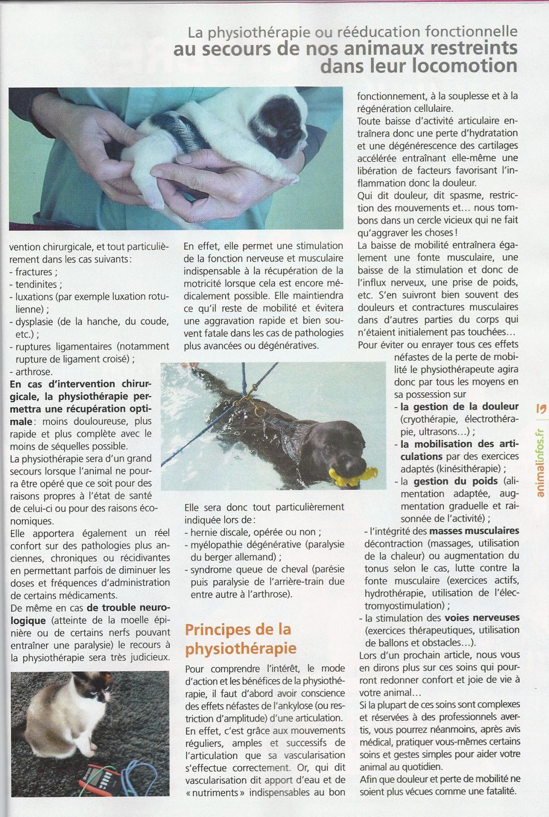 Animalinfo- Physio Dr GUIGARDET
