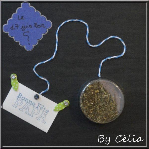 Celia-2.JPG