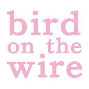 Bird-on-the-wire.jpg