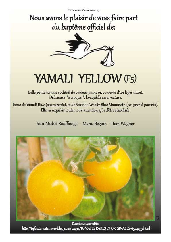 Yamali-YELLOW-2012