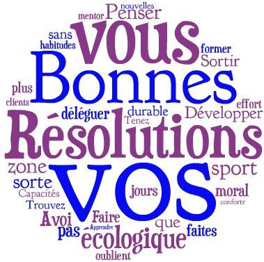 bonnes-resolutions-2013.jpg