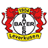 bayer-lev.png