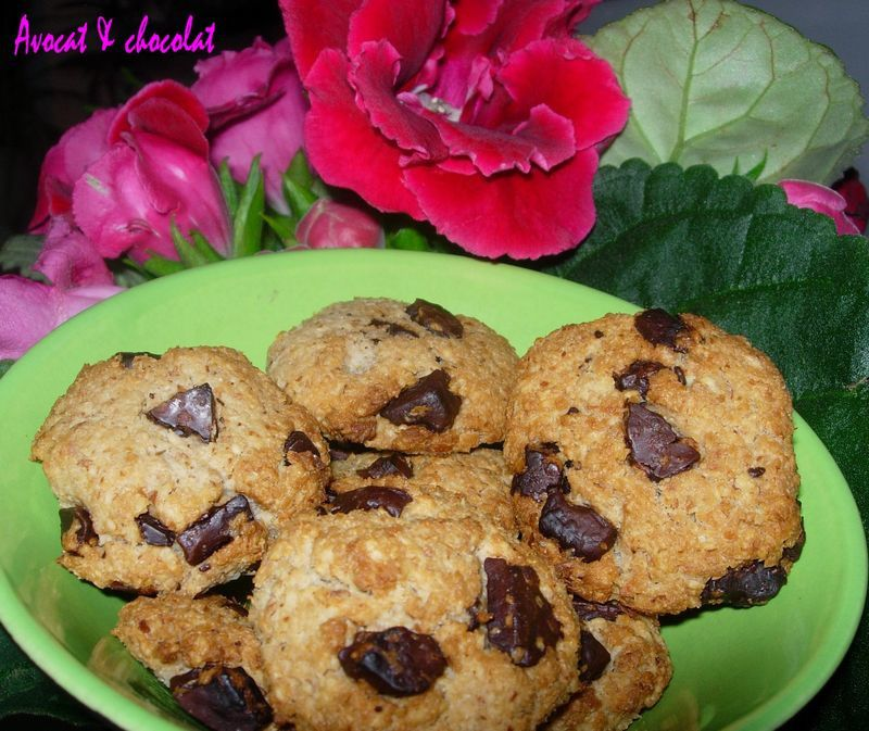 biscuits_flocons_d_avoine_amande__noix_de_coco_fa_on_cookies__3_