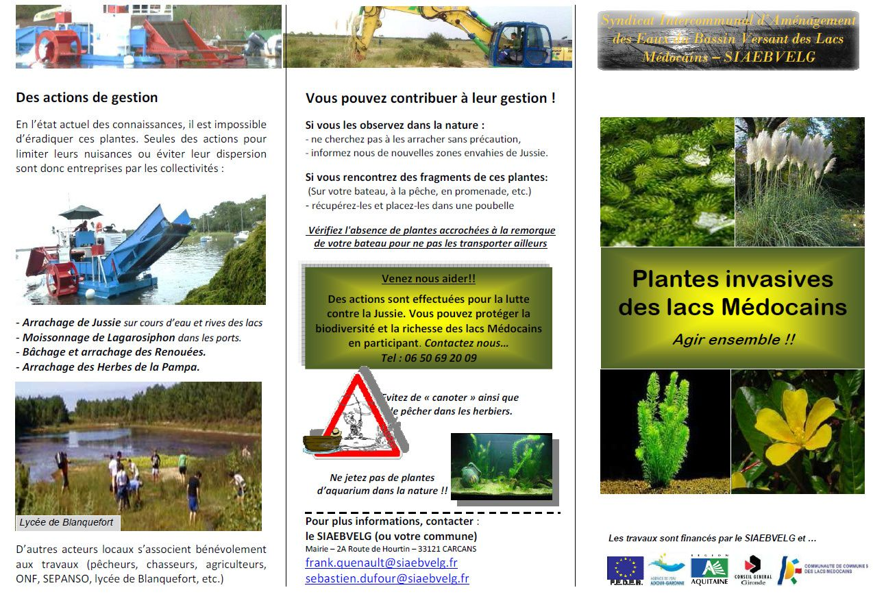 Plaquette plantes invasives page1