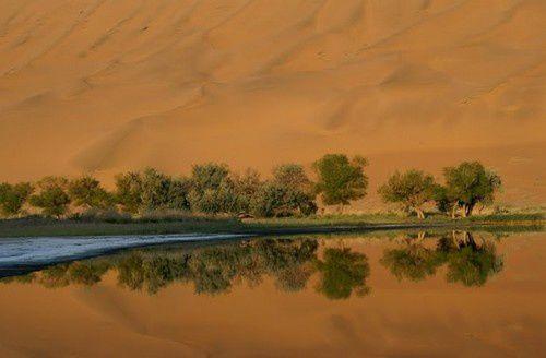 desert 5bis