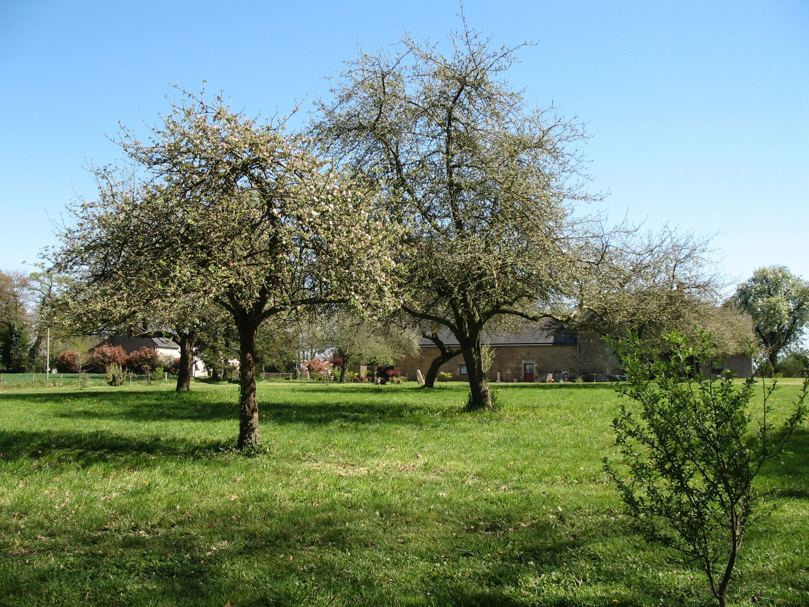 Maison vendre en bretagne 2015 best auto reviews for Maison container 50000
