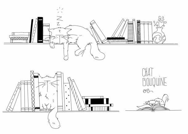 bibliotheque-cat-01