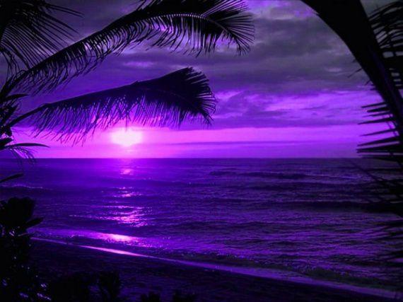 Les paysages que j 39 admire le blog de passions de rejane for Couleur complementaire du violet