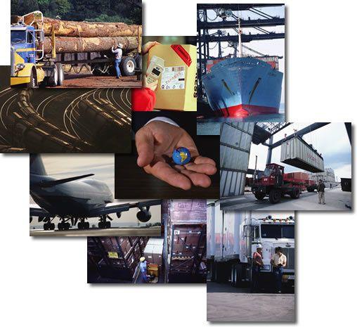 logistique-e-commerce.11.jpg