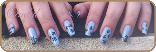little-cats-on-nails-0398.jpg
