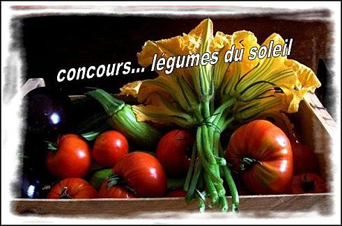 photo-concours
