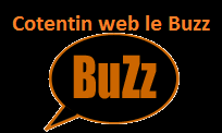 buzz Cotentin web