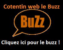 buzz Cotentin web