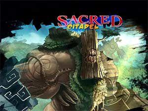 sacred-citadel.jpg