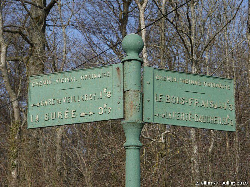51-VILLENEUVE-LA-LIONNE-.jpg