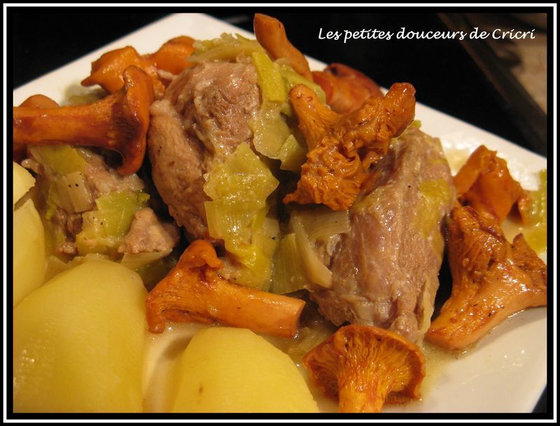 Blanquette_aux_girolles_3