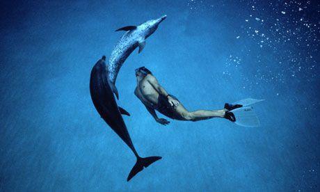 Dolphin_Boy_2