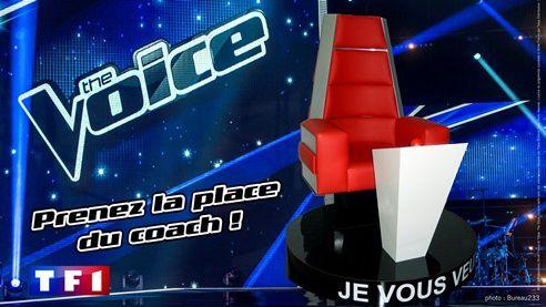 tournee-photo-the-voice-2014-11069511bcsnl.jpg