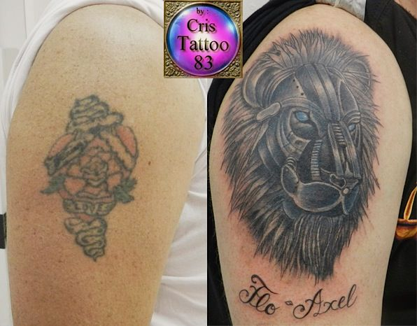 Cover-up with Lion