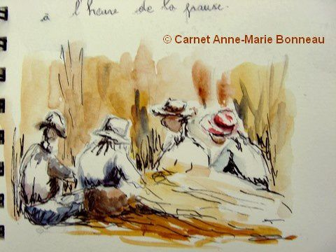 AM Bonneau