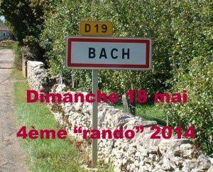 Bach-Panneau-vignette-013-001-300x242-copie-1