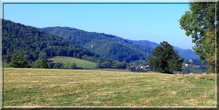 Les collines Ariégeoises sont très vertes !