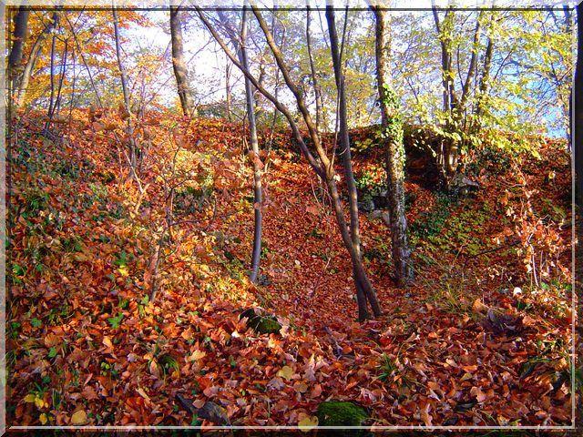 Voyez vous la ruine dans les couleurs d'automne ?