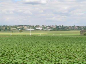 Au loin à 6 kms...Mirebeau.... Vue en arrivant de l'Ouest depuis la route de Thouars
