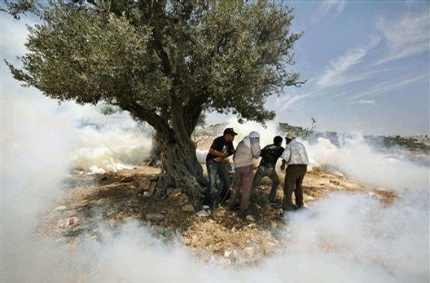 Kevin Frayer, Canada, The Associated Press. Palestinian protestors take cover from Israeli tear gas, West Bank, 27 May