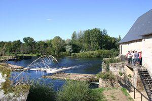 Parc-Ecologia.jpg