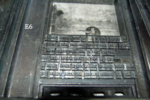 DSC-9019-rec.jpg