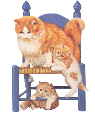 3-chats-sur-chaise.png