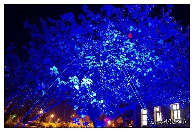 bleu nuit sotteville 0009