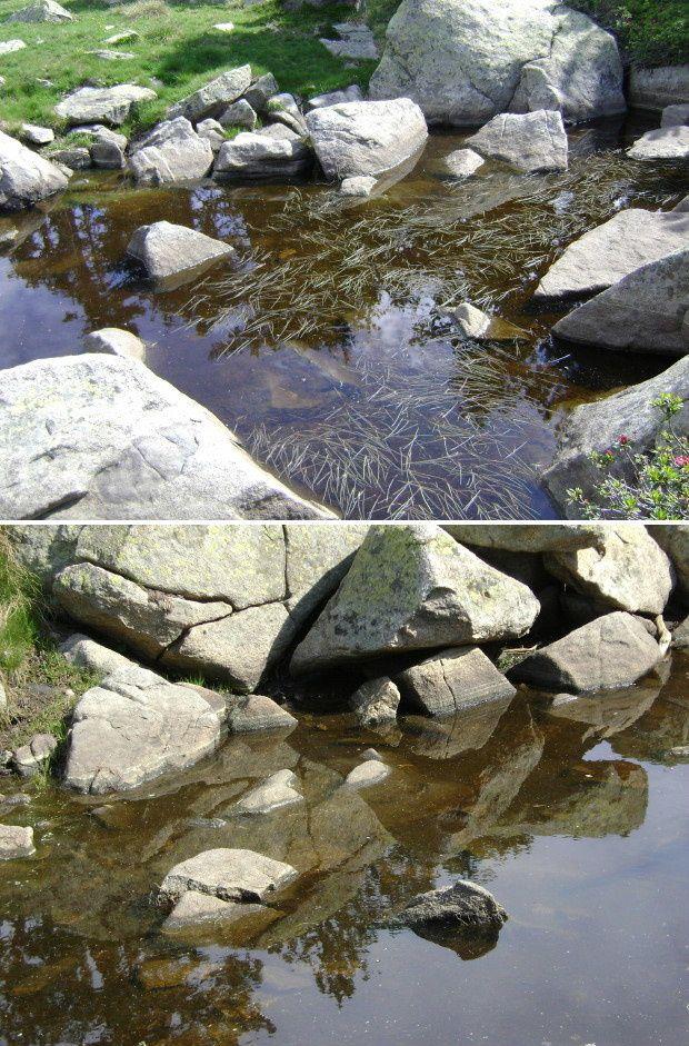eau madres 2010 c