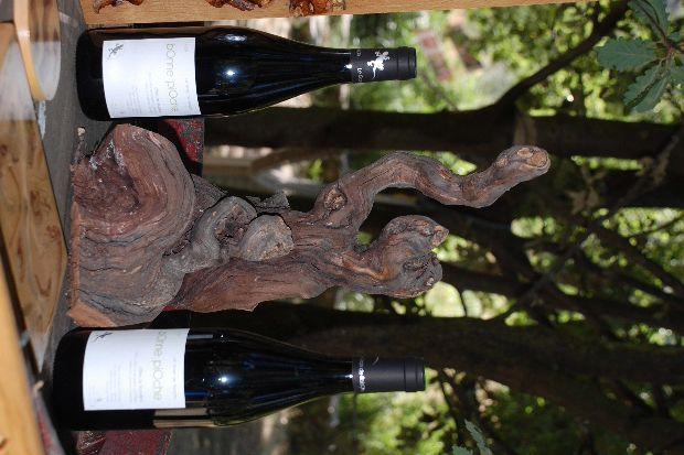 art nature 3d vin seguie 2