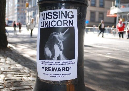 37search-for-missing-unicorn.jpeg