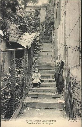 maquis-escalier1.jpg