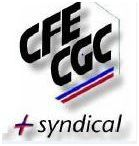 logo-mini-le---syndical.JPG