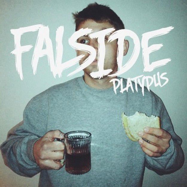 FALSIDE-PLATYPUS-new-digital-album.jpg