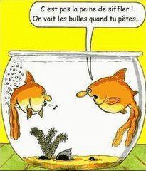 poisson-humour.jpg