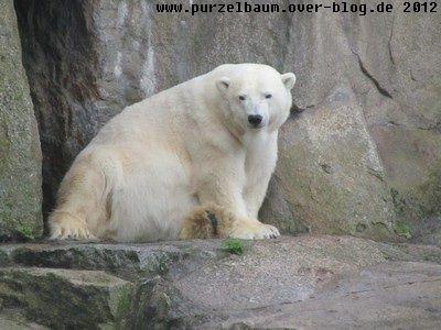 Katjuscha20120915 020