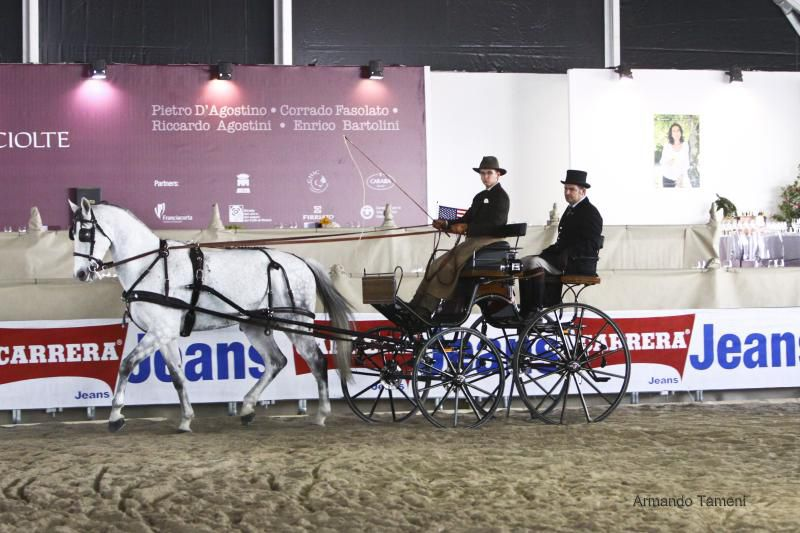 Salon internationnal du cheval 2012 à Vérone