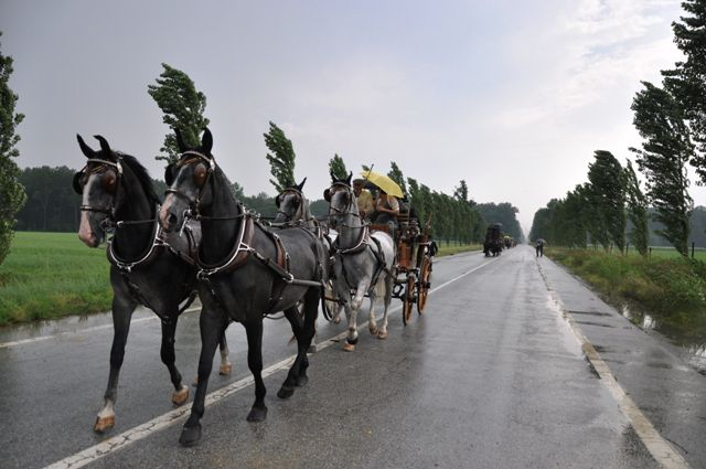 "Album photos en lien avec l'article""La tradition aux championnat du monde de tir à l'arc à Turin"""