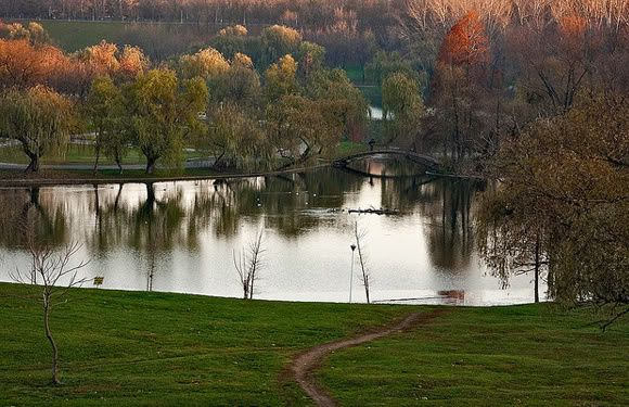paysage-automne.jpg