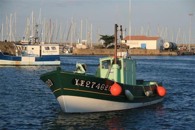 Vendée, l'île d'Yeu