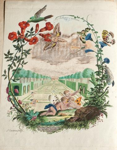 frontispice-couleur-Denis-et-Schiffermuller-2.png