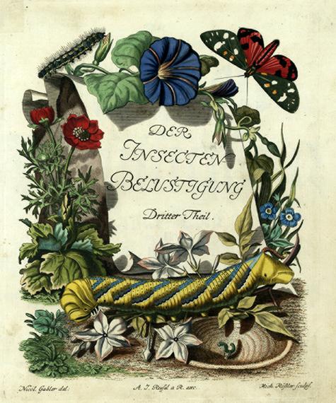 Roesel-Insecten-belustigung-partie-2-frontispice.png