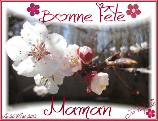 Bonne-Fete-Maman-Le-26-Mai-2013.jpg